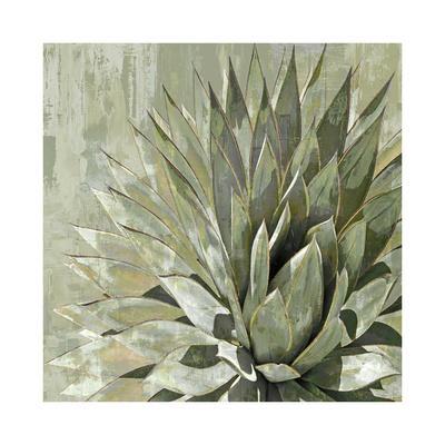Succulent Verde I