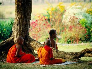 Buddhist Monks at Meditation under Tree by Lindsay Brown