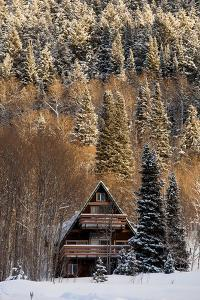 A Cozy Cabin In The Woods by Lindsay Daniels