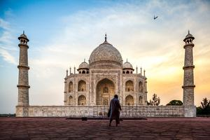 A Man Stands In Fron To F The Taj Mahal With Bird In Flight by Lindsay Daniels