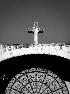 Cross by Lindsay Daniels