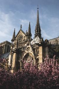 Notre Dame De Paris by Lindsay Daniels