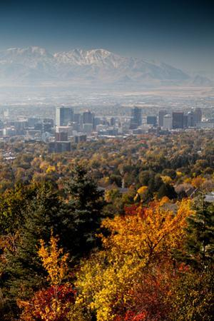 Salt Lake City In Autumn by Lindsay Daniels