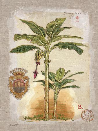 https://imgc.artprintimages.com/img/print/linen-banana-palm-tree_u-l-pi4adn0.jpg?p=0