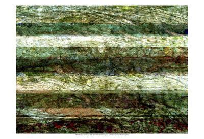 Lines of Nature II-Danielle Harrington-Art Print