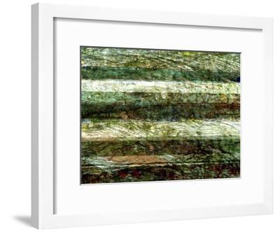 Lines of Nature II-Danielle Harrington-Framed Art Print