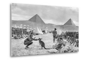 Lines of the Australian 9th and 10th Battalions at Mena Camp