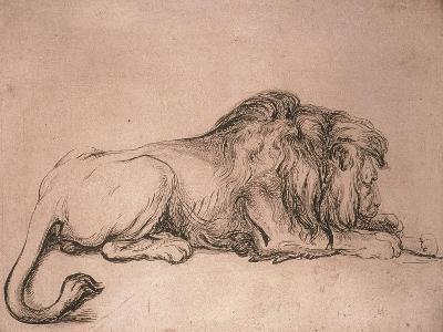 Lion couché rongeant un os-Rembrandt van Rijn-Giclee Print