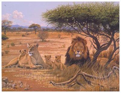 Lion Familly-Clive Kay-Framed Art Print