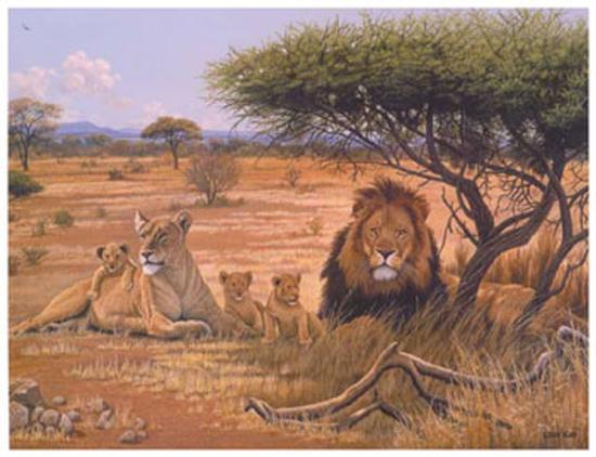 Lion Familly-Clive Kay-Art Print