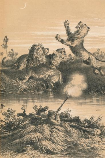 Lion Hunting At Night, c1880--Giclee Print