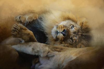 Lion Love 2-Jai Johnson-Giclee Print