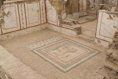 Lion Mosaic, Murals and Frescoes in a Terrace House, Curetes Street-Eleanor Scriven-Photographic Print