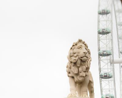Lion of London-Keri Bevan-Photo