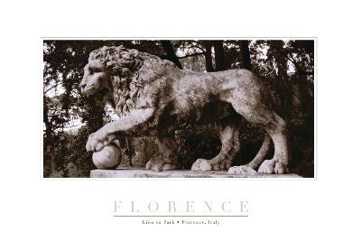 Lion Park III-John Warren-Photographic Print