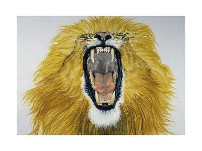 Lion (Phantera Leo), Felidae--Giclee Print