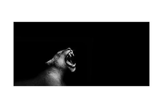 Lion Roarng-Donvanstaden-Art Print