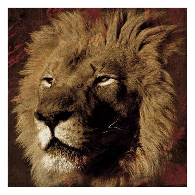 https://imgc.artprintimages.com/img/print/lion-streaks_u-l-f8dz5z0.jpg?p=0