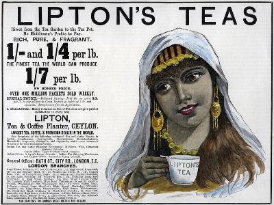Lipton's Teas Advertisement, 1893--Giclee Print