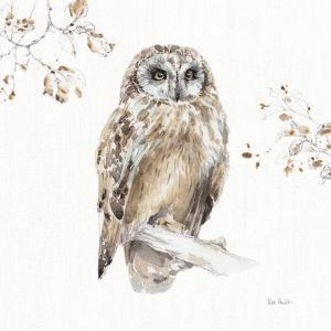 A Woodland Walk VIII by Lisa Audit