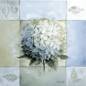 Blue Hydrangea Study 1 by Lisa Audit
