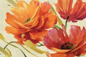 Flamboyant III by Lisa Audit