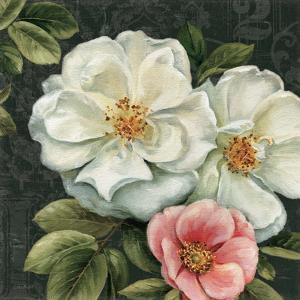Floral Damask III by Lisa Audit