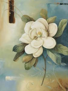 Magnolia Abstract II by Lisa Audit