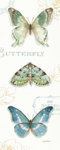 My Greenhouse Butterflies VI by Lisa Audit