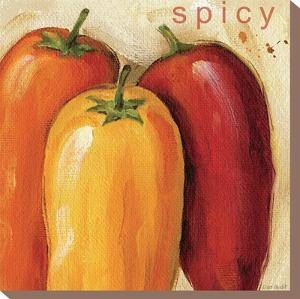 Spicy by Lisa Audit