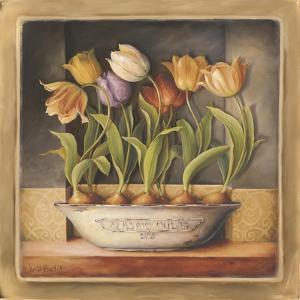 Tulip Classic Bulb by Lisa Audit