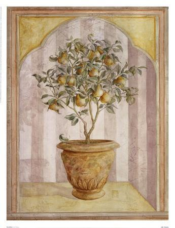Pear Niche