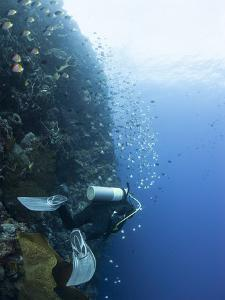 Diver Swimming Along a Wall at Bunaken, Sulawesi, Indonesia, Southeast Asia, Asia by Lisa Collins