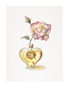 Love Potion by Lisa Danielle
