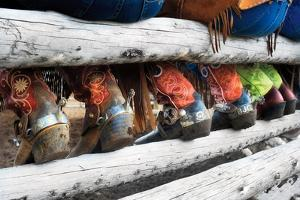 Boots & Spurs by Lisa Dearing