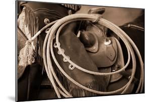 Cowgirls Lasso by Lisa Dearing