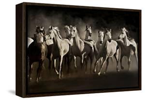 Dream Horses by Lisa Dearing