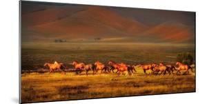 Montana Dreaming by Lisa Dearing