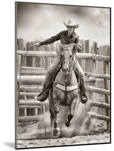 Ride 'Em Cowgirl by Lisa Dearing