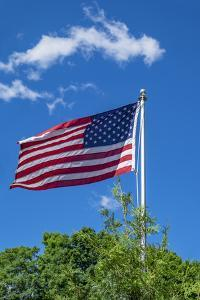 American flag blowing in the wind, USA by Lisa Engelbrecht