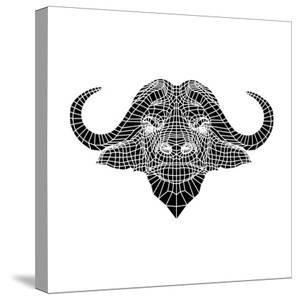 Black and White Buffalo Mesh by Lisa Kroll