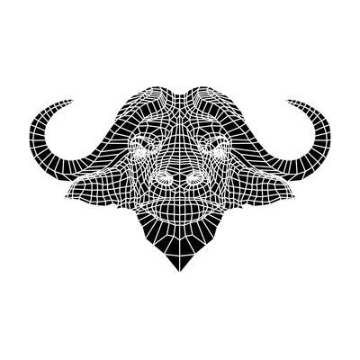 Black and White Buffalo Mesh