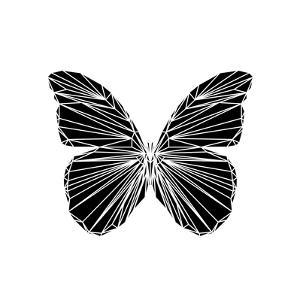 Black Butterfly by Lisa Kroll