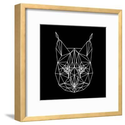 Bobcat Polygon1
