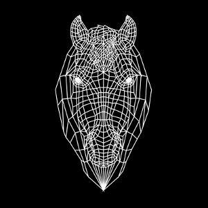 Horse Head Black Mesh by Lisa Kroll