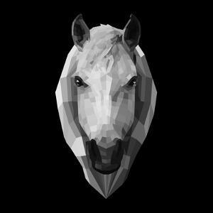 Horse Head by Lisa Kroll