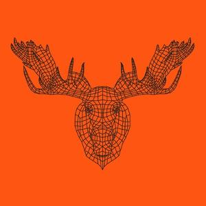 Moose Head Orange Mesh by Lisa Kroll