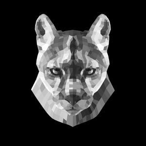 Mountain Lion Head by Lisa Kroll