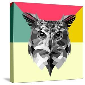 Owl Head by Lisa Kroll