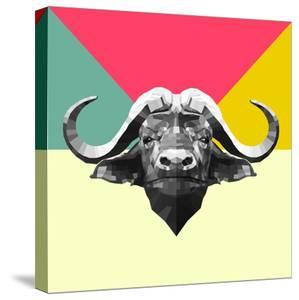 Party Buffalo by Lisa Kroll